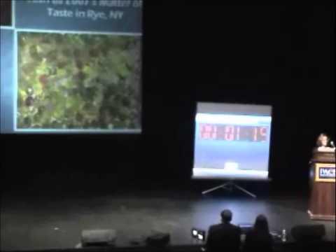 2007 Fourth Annual Pace Pitch Contest - Through My Eyes - Sarah Lipkin
